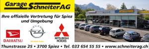 Logo Schneiter AG