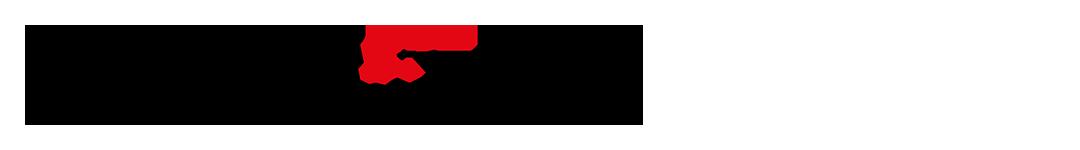 evo-racing.ch Logo